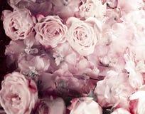 新鲜的桃红色玫瑰葡萄酒花束  免版税库存图片