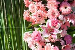 新鲜的桃红色百合和大丁草花 免版税库存图片