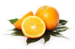新鲜的桔子 免版税库存图片