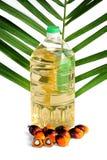 新鲜的棕榈油种子和与叶子的烹调用油 库存照片