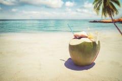 新鲜的椰子鸡尾酒与在含沙热带海滩-在夏天假期 免版税图库摄影
