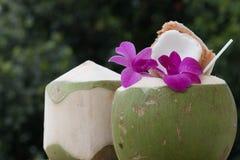 新鲜的椰子鸡尾酒装饰了紫色兰花 免版税库存照片