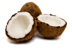 新鲜的椰子 库存照片