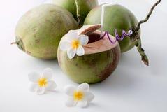 新鲜的椰子水 免版税图库摄影