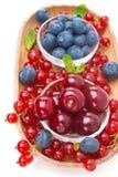 新鲜的樱桃、蓝莓和红浆果在一个木碗 免版税库存图片
