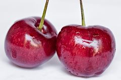 新鲜的樱桃,隔绝在白色背景 免版税库存照片