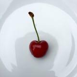 新鲜的樱桃 图库摄影