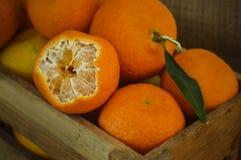 新鲜的橘子 免版税库存图片