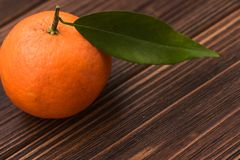 新鲜的橘子 免版税图库摄影