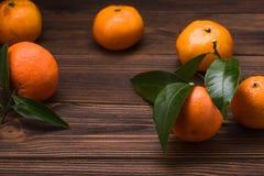 新鲜的橘子 库存照片