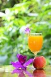 新鲜的橙汁 免版税库存照片