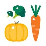 新鲜的橙色南瓜、红萝卜和硬花甘蓝隔绝了传染媒介例证 免版税库存图片