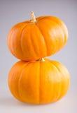 新鲜的橙色南瓜 免版税库存照片