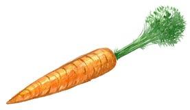 新鲜的橙色成熟红萝卜的手拉的水彩例证 查出在空白背景 库存照片