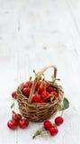 新鲜的欧洲酸樱桃 免版税库存图片