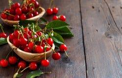 新鲜的欧洲酸樱桃 免版税库存照片