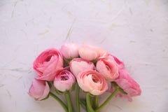 在纹理的桃红色花 免版税库存照片