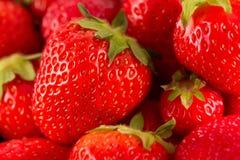 新鲜的水多的红色草莓 免版税库存照片