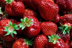 新鲜的水多的草莓 免版税库存照片
