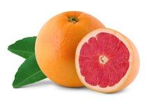 新鲜的水多的葡萄柚 免版税库存图片