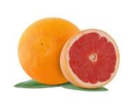 新鲜的水多的葡萄柚 免版税图库摄影
