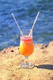 新鲜的汁液桔子番木瓜 库存图片