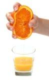 新鲜的汁液桔子 库存图片