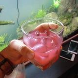 新鲜的汁液用粉红色葡萄柚 免版税图库摄影