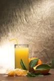 新鲜的汁液 免版税图库摄影