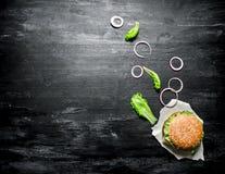 新鲜的汉堡用葱和草本 顶视图 免版税库存照片