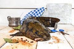 新鲜的江鳕 免版税图库摄影