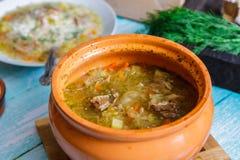 新鲜的汤用肉和菜在一个陶瓷碗 免版税库存照片