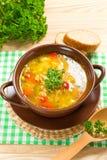 新鲜的汤 免版税库存图片