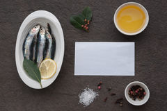 新鲜的沙丁鱼 免版税库存照片