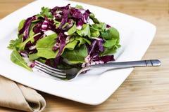 新鲜的沙拉和草本在板材有叉子和餐巾的 图库摄影