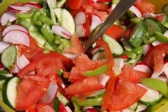 新鲜的沙拉夏天蔬菜 库存照片