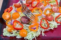 新鲜的沙拉板材用皱叶甘蓝,五颜六色的蕃茄 库存图片