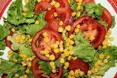 新鲜的沙拉用在板材的蕃茄 免版税库存图片