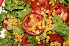 新鲜的沙拉用在板材的蕃茄 免版税图库摄影