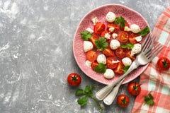 新鲜的沙拉用无盐干酪和蕃茄在一把灰色背景、方格的餐巾和叉子 复制空间 库存图片