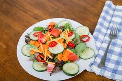 新鲜的沙拉用热的红辣椒 免版税图库摄影
