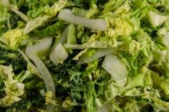 新鲜的沙拉用皱叶甘蓝和葱 免版税图库摄影