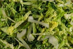 新鲜的沙拉用皱叶甘蓝和葱 免版税库存图片