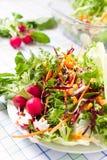新鲜的沙拉用圆白菜 库存照片