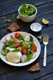 新鲜的沙拉用蕃茄和无盐干酪 免版税图库摄影