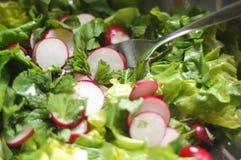 新鲜的沙拉用薄菏和萝卜 免版税库存图片
