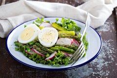 新鲜的沙拉用莴苣、芦笋和鸡蛋 库存图片