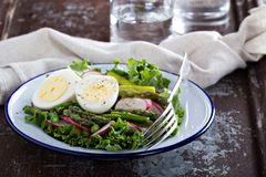 新鲜的沙拉用莴苣、芦笋和鸡蛋 免版税库存图片