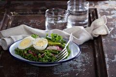 新鲜的沙拉用莴苣、芦笋和鸡蛋 免版税库存照片