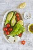 新鲜的沙拉的成份用鲕梨和西红柿 免版税库存图片